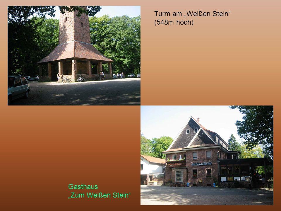 """Turm am """"Weißen Stein (548m hoch)"""