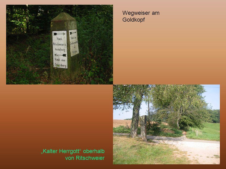 """Wegweiser am Goldkopf """"Kalter Herrgott oberhalb von Ritschweier"""