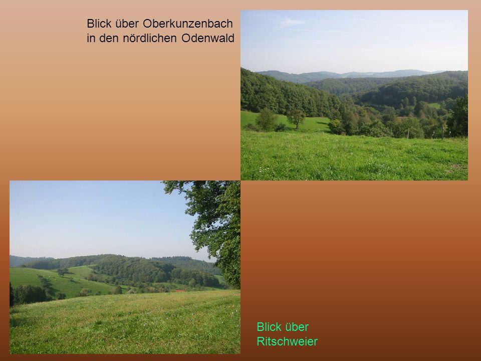 Blick über Oberkunzenbach in den nördlichen Odenwald