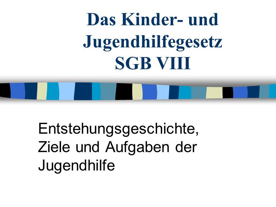 Das Kinder- und Jugendhilfegesetz SGB VIII