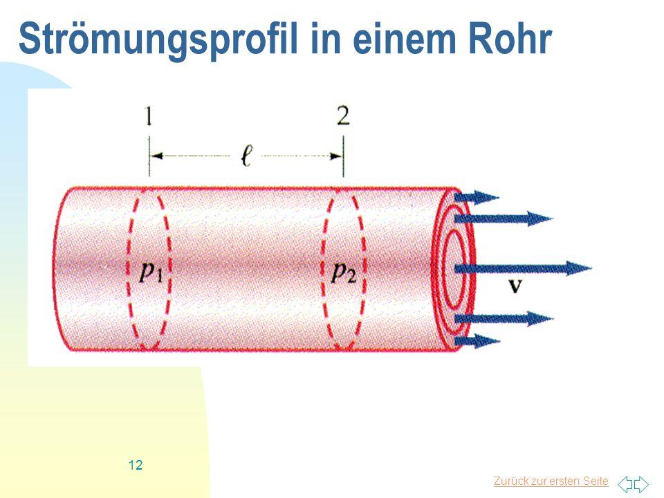 Strömungsprofil in einem Rohr