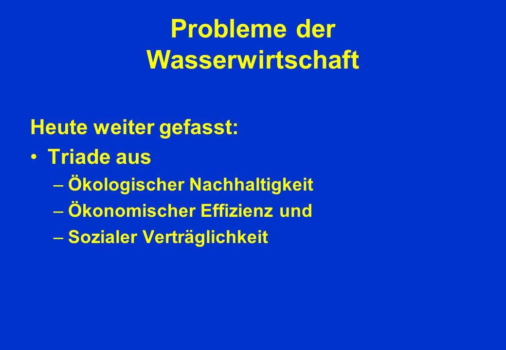 Probleme der Wasserwirtschaft