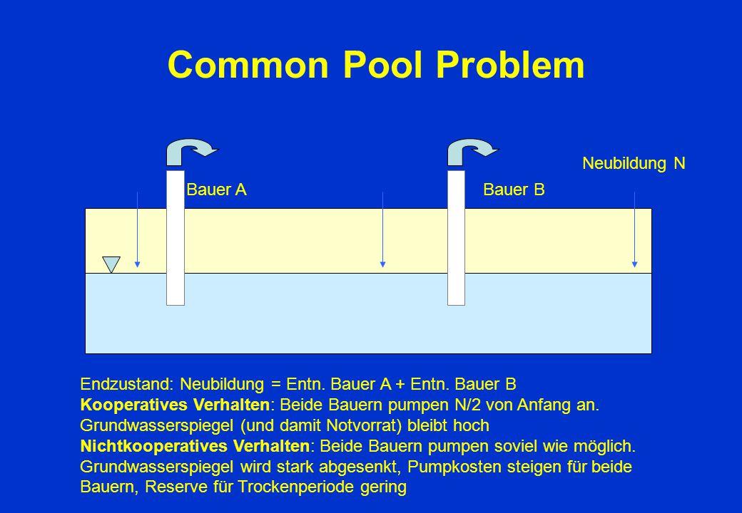 Common Pool Problem Neubildung N Bauer A Bauer B