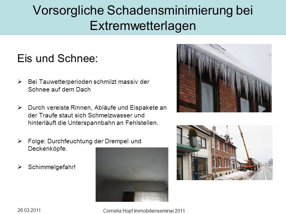 Vorsorgliche Schadensminimierung bei Extremwetterlagen