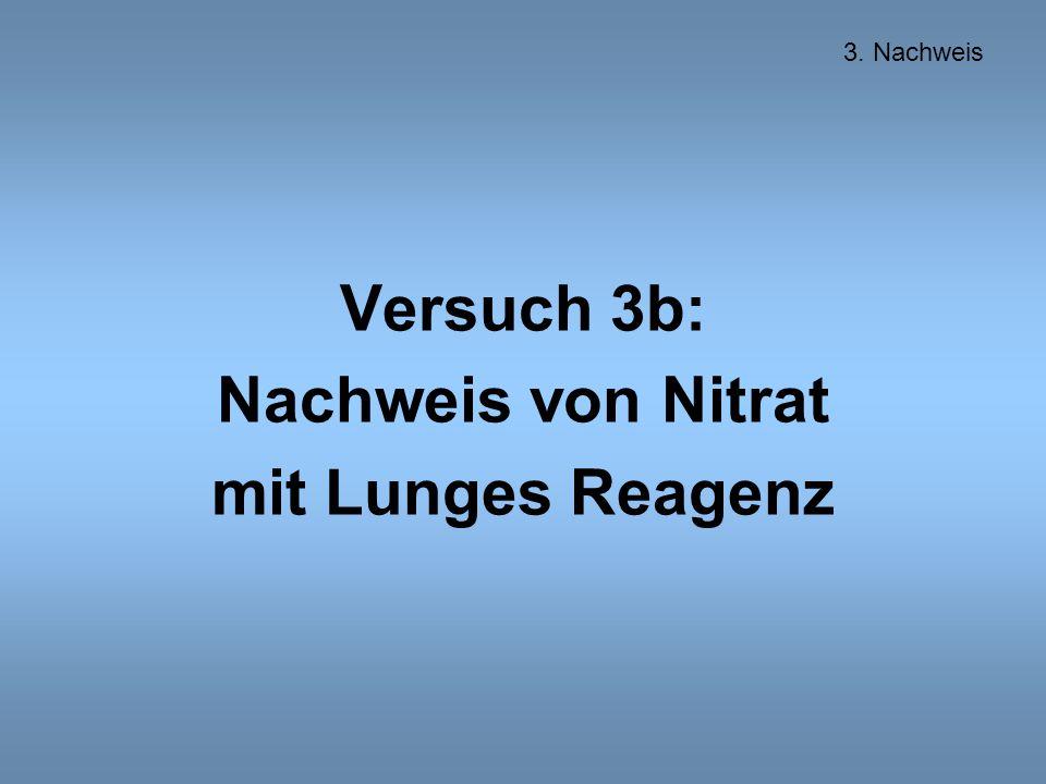 Versuch 3b: Nachweis von Nitrat mit Lunges Reagenz