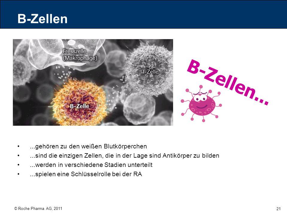 B-Zellen... B-Zellen ...gehören zu den weißen Blutkörperchen