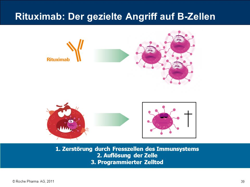 Rituximab: Der gezielte Angriff auf B-Zellen