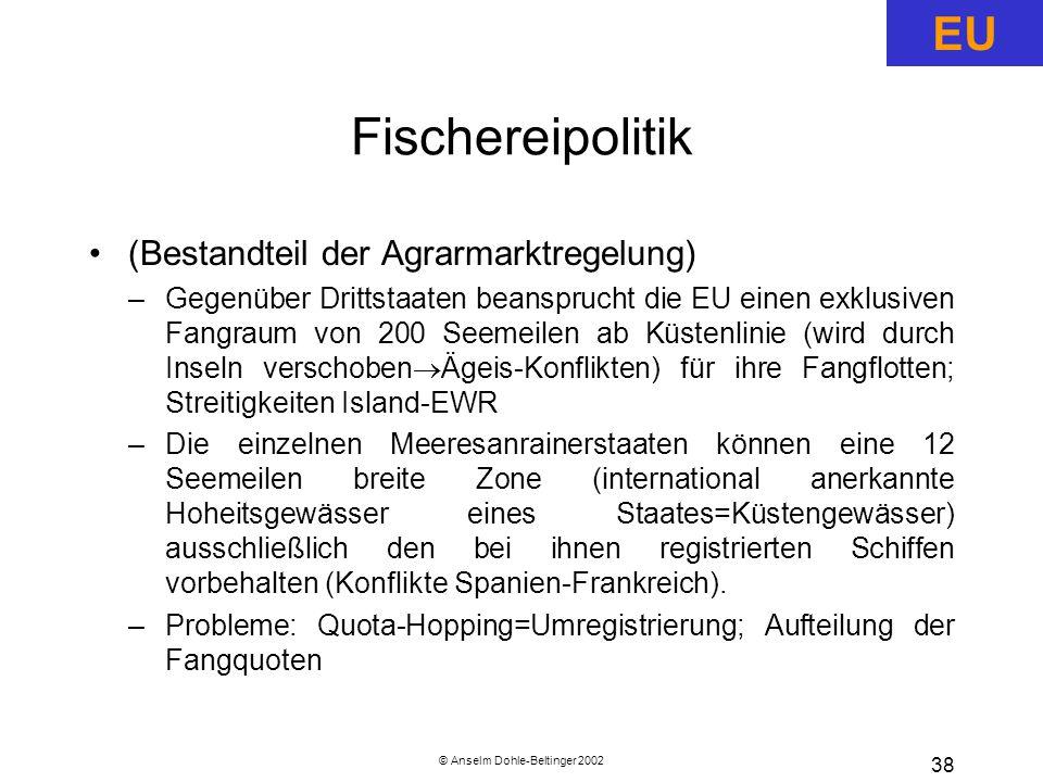 © Anselm Dohle-Beltinger 2002
