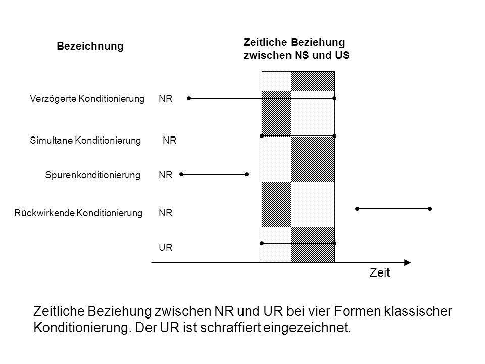 Zeitliche Beziehung zwischen NS und US. Bezeichnung. Verzögerte Konditionierung. NR. Simultane Konditionierung.