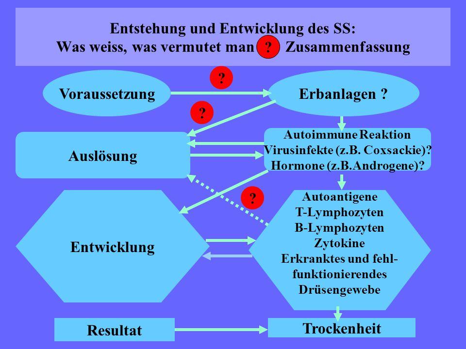 Virusinfekte (z.B. Coxsackie) Hormone (z.B.Androgene)