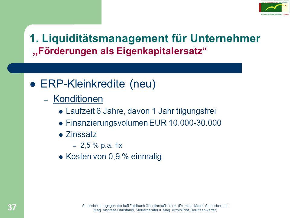 ERP-Kleinkredite (neu)