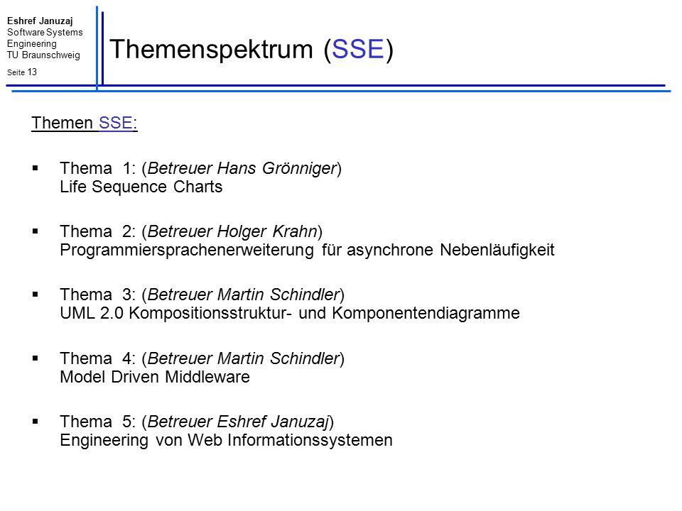 Themenspektrum (SSE) Themen SSE: