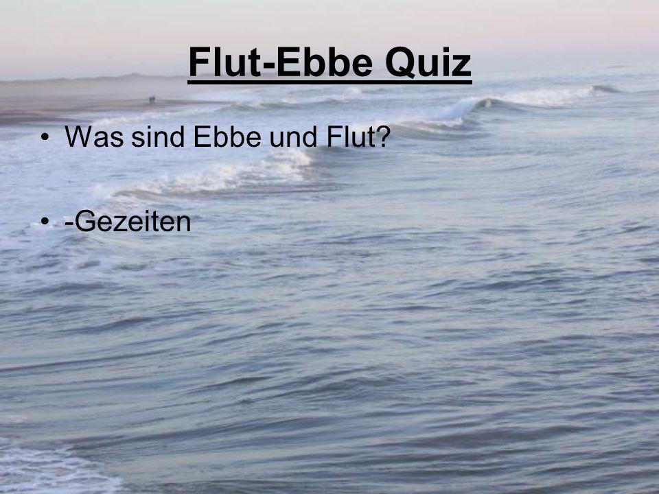 Flut-Ebbe Quiz Was sind Ebbe und Flut -Gezeiten