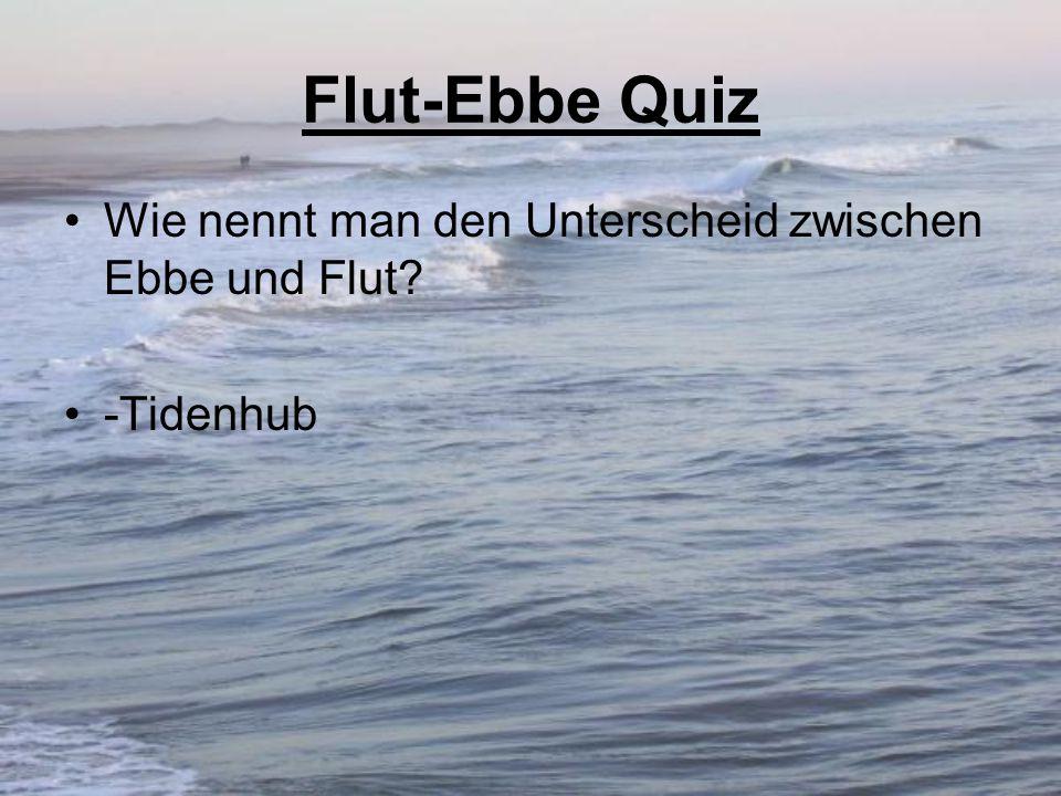 Flut-Ebbe Quiz Wie nennt man den Unterscheid zwischen Ebbe und Flut