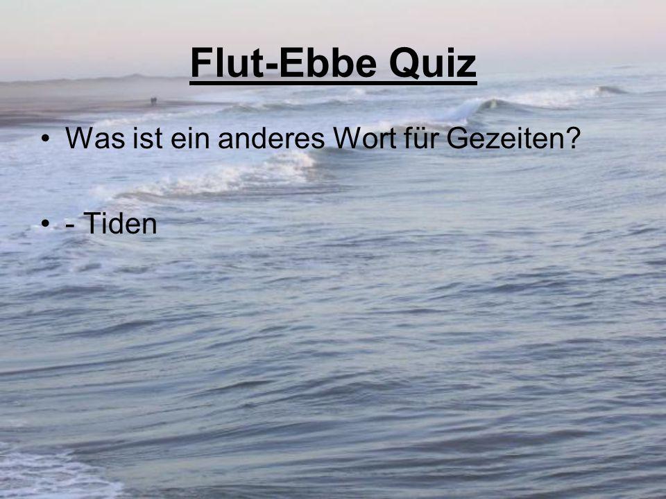 Flut-Ebbe Quiz Was ist ein anderes Wort für Gezeiten - Tiden