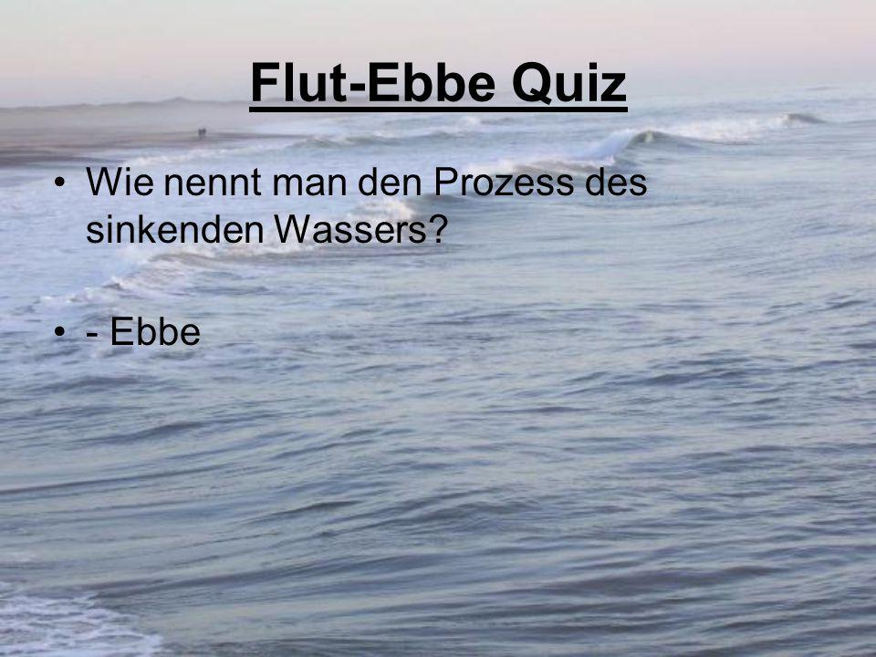 Flut-Ebbe Quiz Wie nennt man den Prozess des sinkenden Wassers - Ebbe