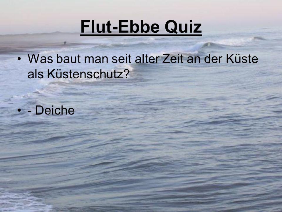 Flut-Ebbe Quiz Was baut man seit alter Zeit an der Küste als Küstenschutz - Deiche