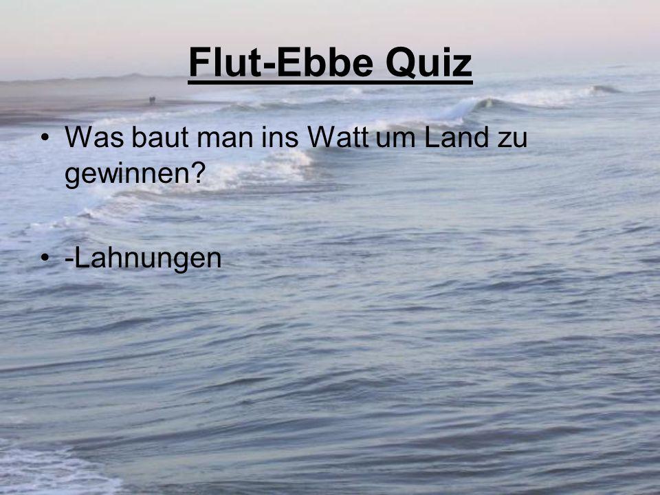 Flut-Ebbe Quiz Was baut man ins Watt um Land zu gewinnen -Lahnungen