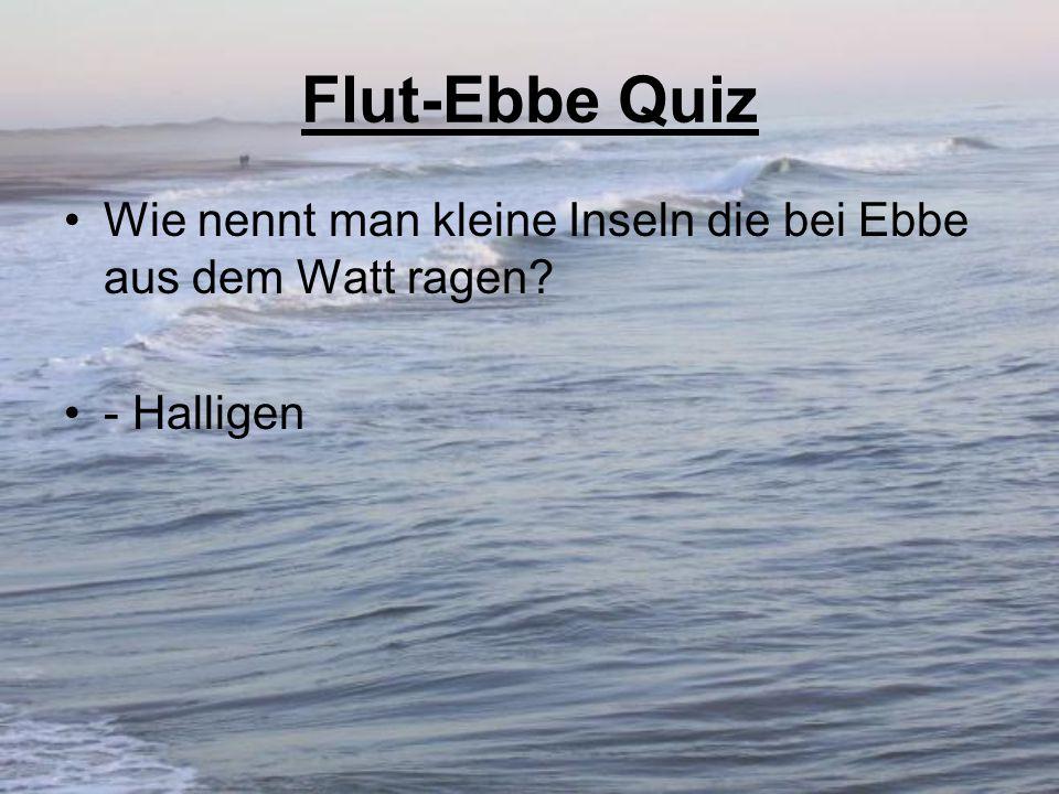 Flut-Ebbe Quiz Wie nennt man kleine Inseln die bei Ebbe aus dem Watt ragen - Halligen