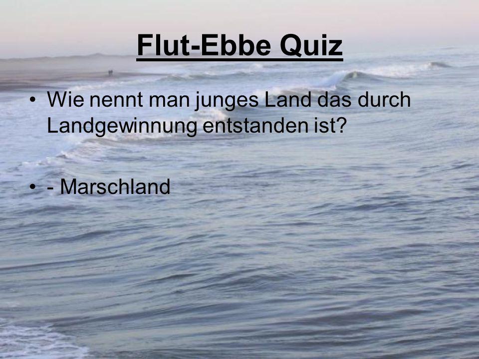 Flut-Ebbe Quiz Wie nennt man junges Land das durch Landgewinnung entstanden ist - Marschland