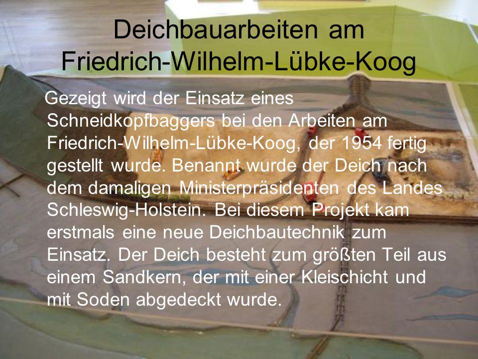 Deichbauarbeiten am Friedrich-Wilhelm-Lübke-Koog