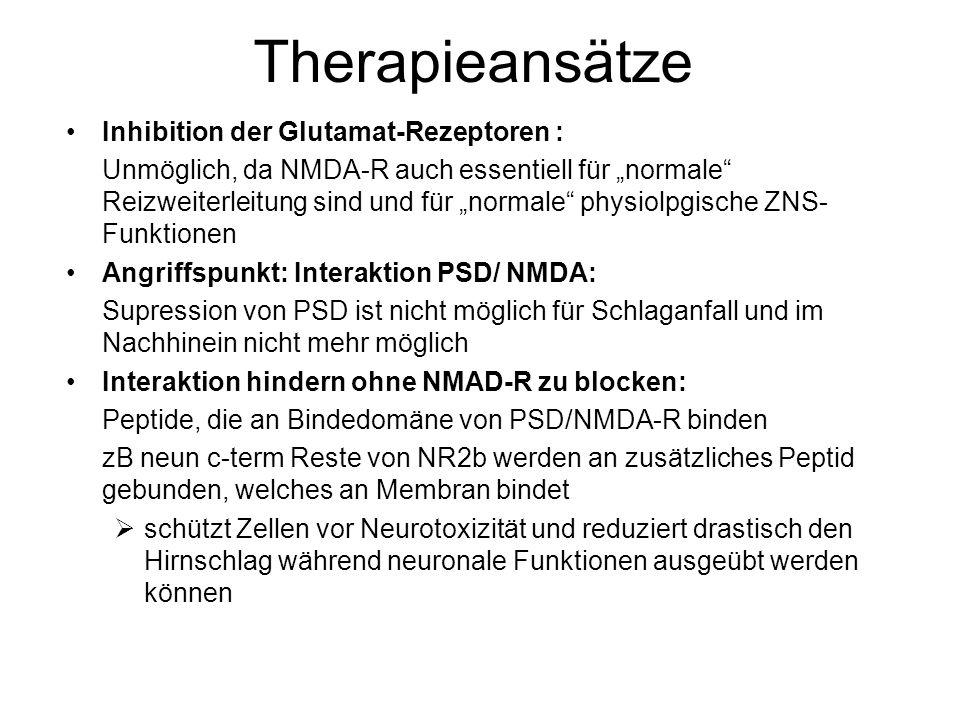 Therapieansätze Inhibition der Glutamat-Rezeptoren :