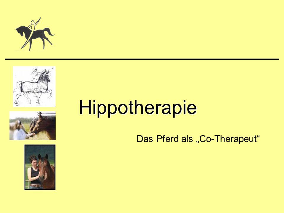 "Das Pferd als ""Co-Therapeut"