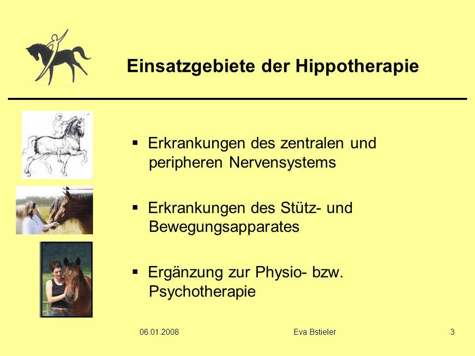 Einsatzgebiete der Hippotherapie