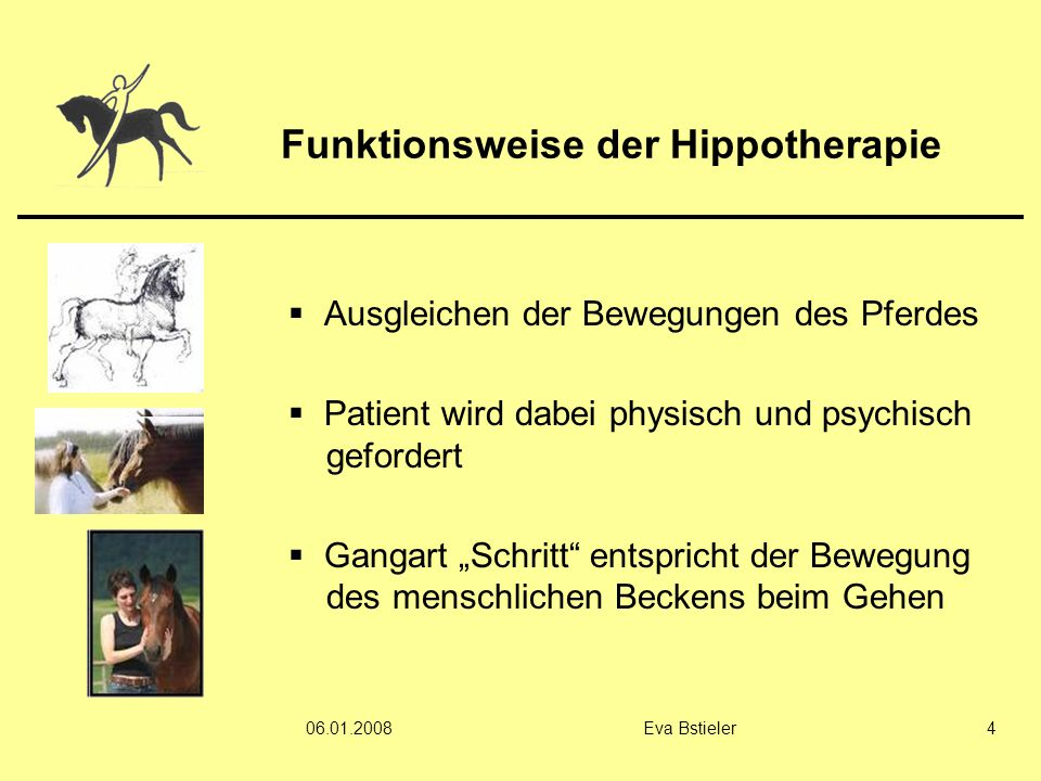 Funktionsweise der Hippotherapie