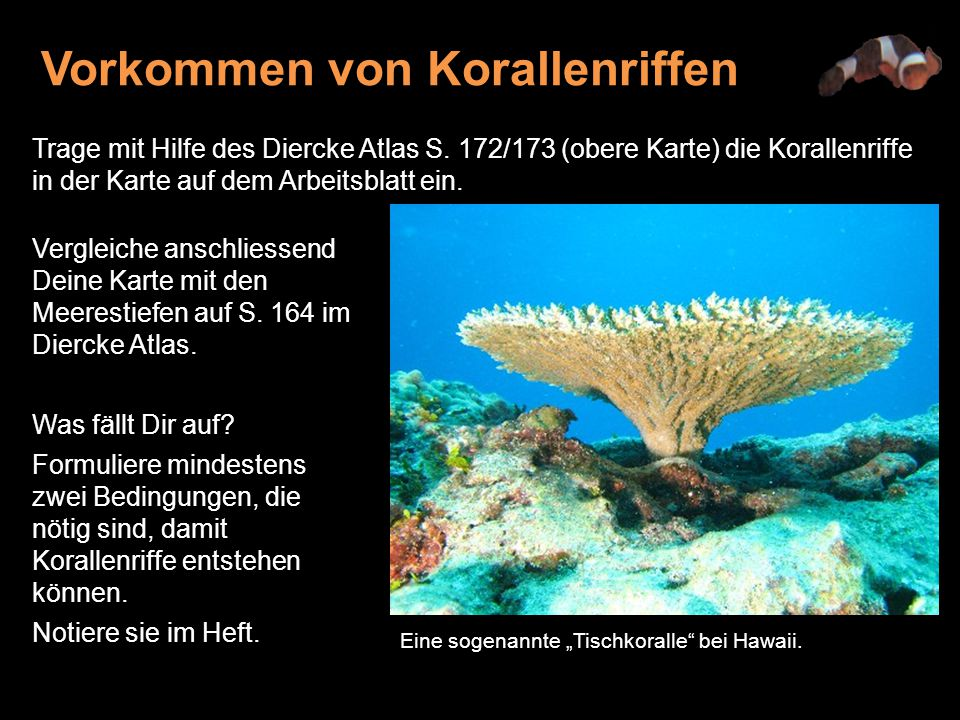 Vorkommen von Korallenriffen