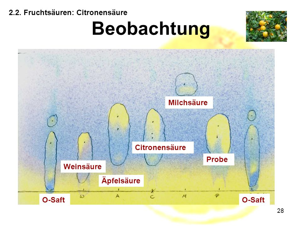 Beobachtung 2.2. Fruchtsäuren: Citronensäure Milchsäure Citronensäure