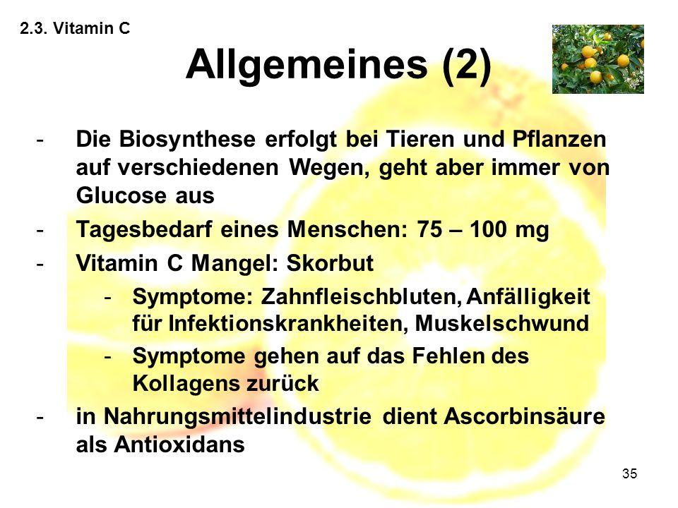 2.3. Vitamin C Allgemeines (2) Die Biosynthese erfolgt bei Tieren und Pflanzen auf verschiedenen Wegen, geht aber immer von Glucose aus.