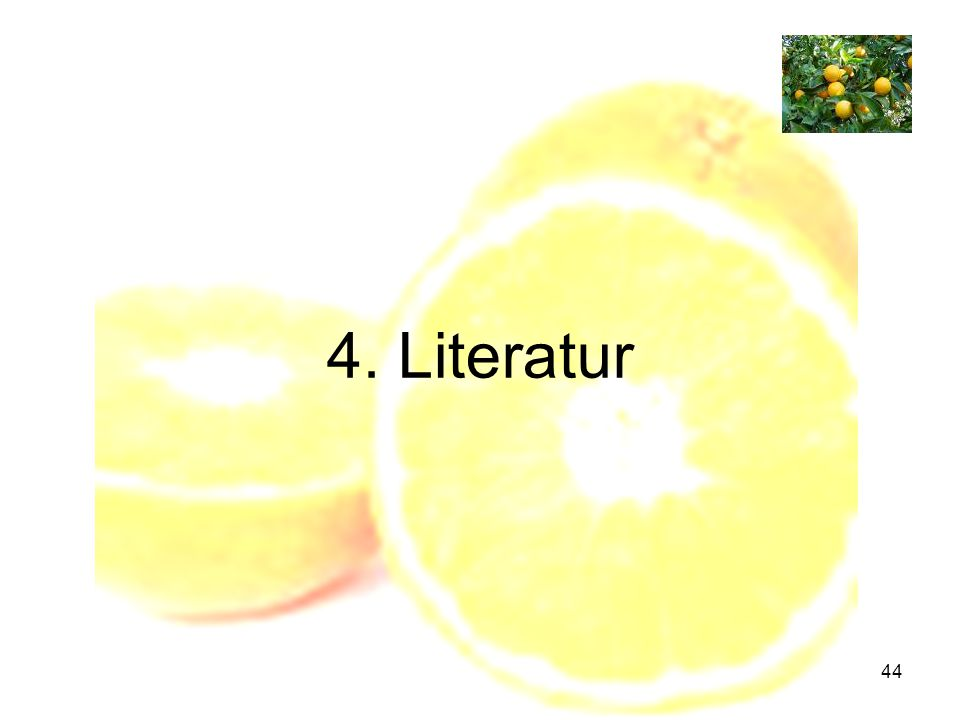 4. Literatur