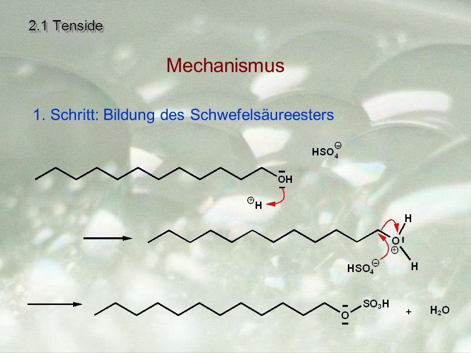 2.1 Tenside Mechanismus Schritt: Bildung des Schwefelsäureesters