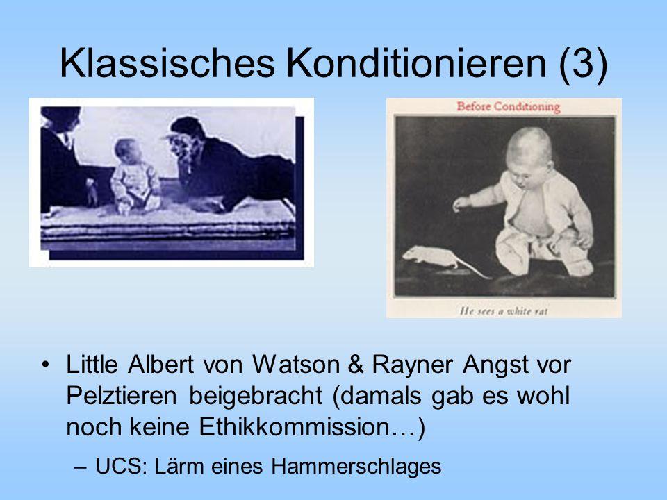 Klassisches Konditionieren (3)