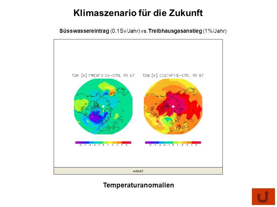 Süsswassereintrag (0.1Sv/Jahr) vs.Treibhausgasanstieg (1%/Jahr)