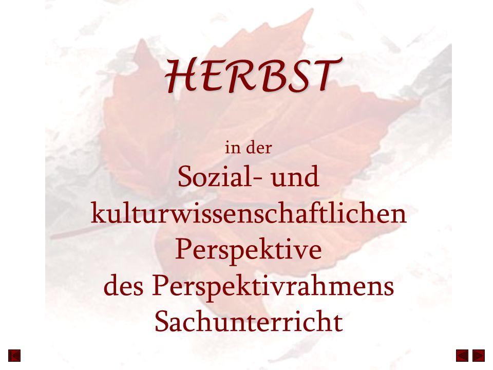 HERBST in der Sozial- und kulturwissenschaftlichen Perspektive des Perspektivrahmens Sachunterricht
