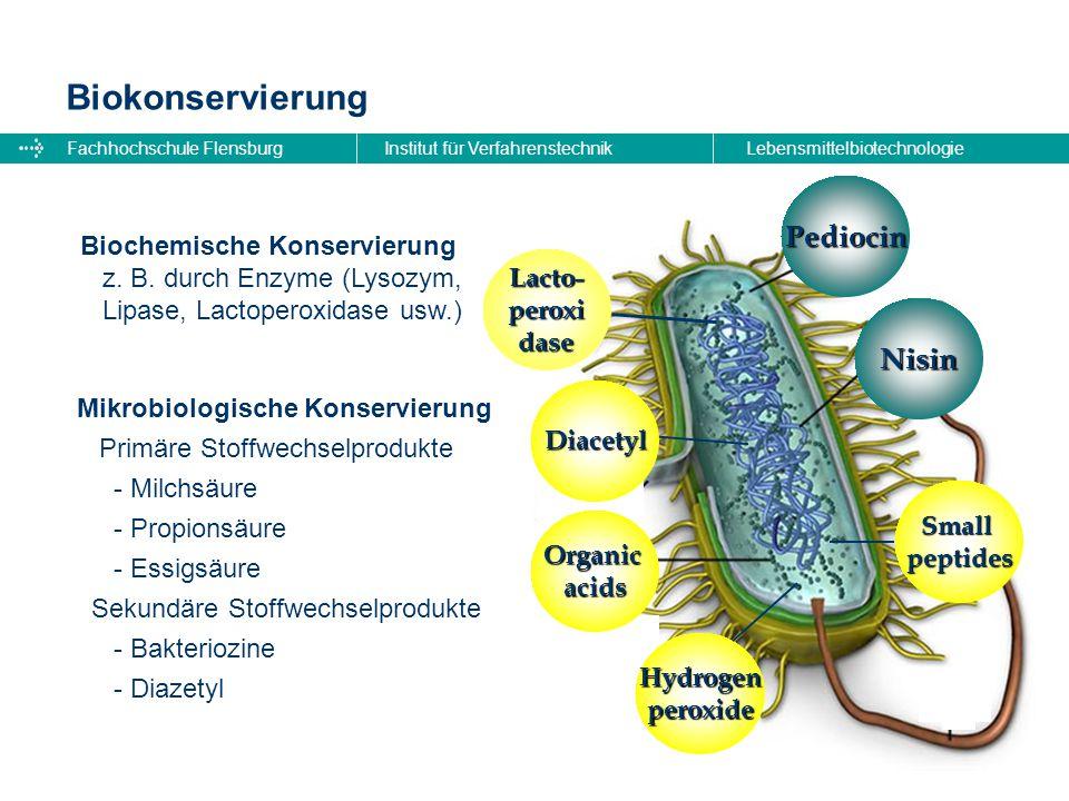 Biokonservierung Pediocin Nisin Biochemische Konservierung