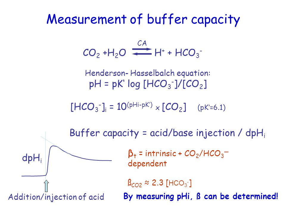 Measurement of buffer capacity