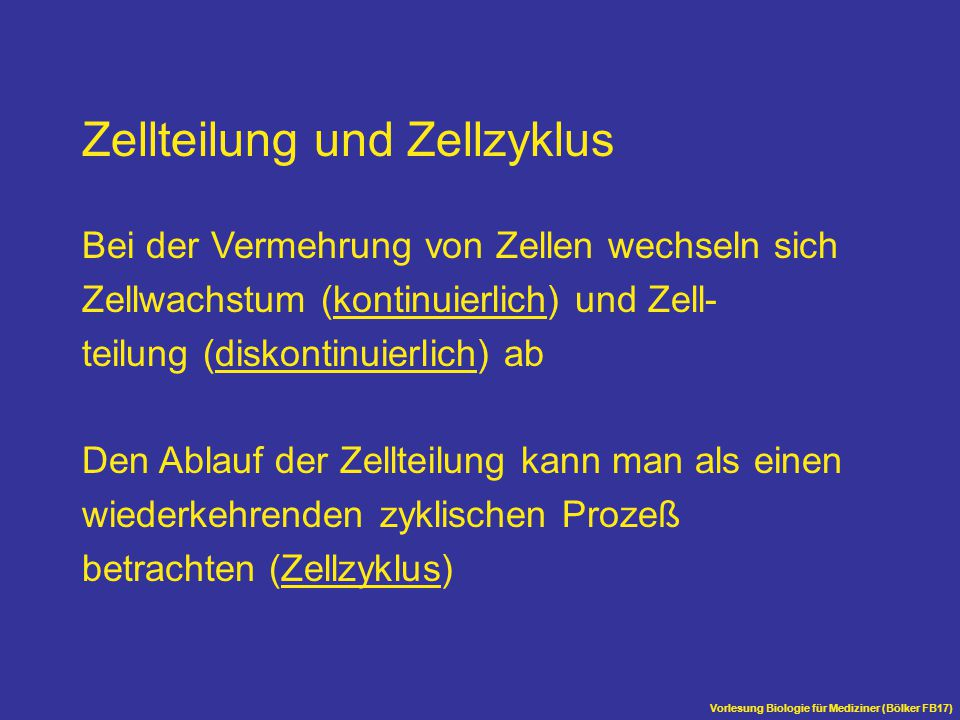 Zellteilung und Zellzyklus