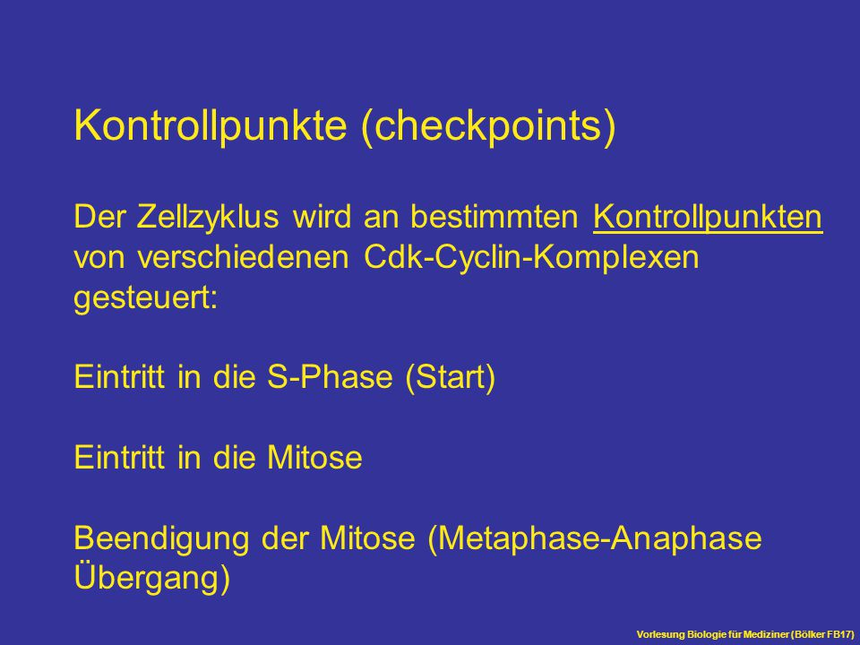 Kontrollpunkte (checkpoints)