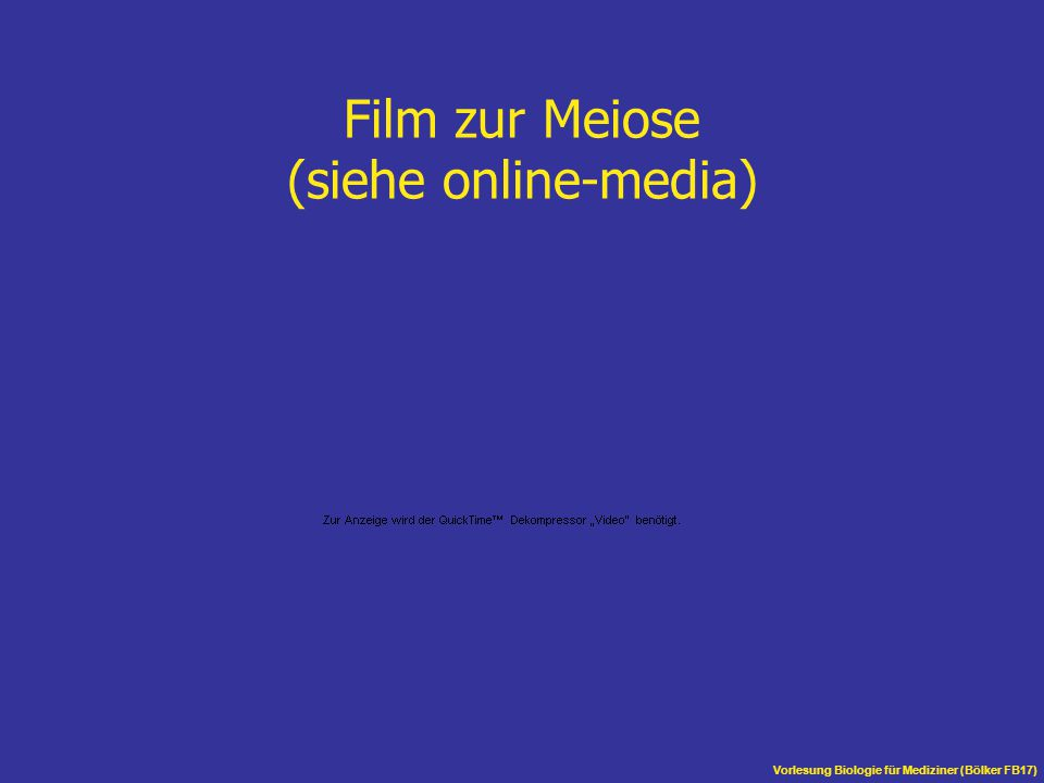 Film zur Meiose (siehe online-media)