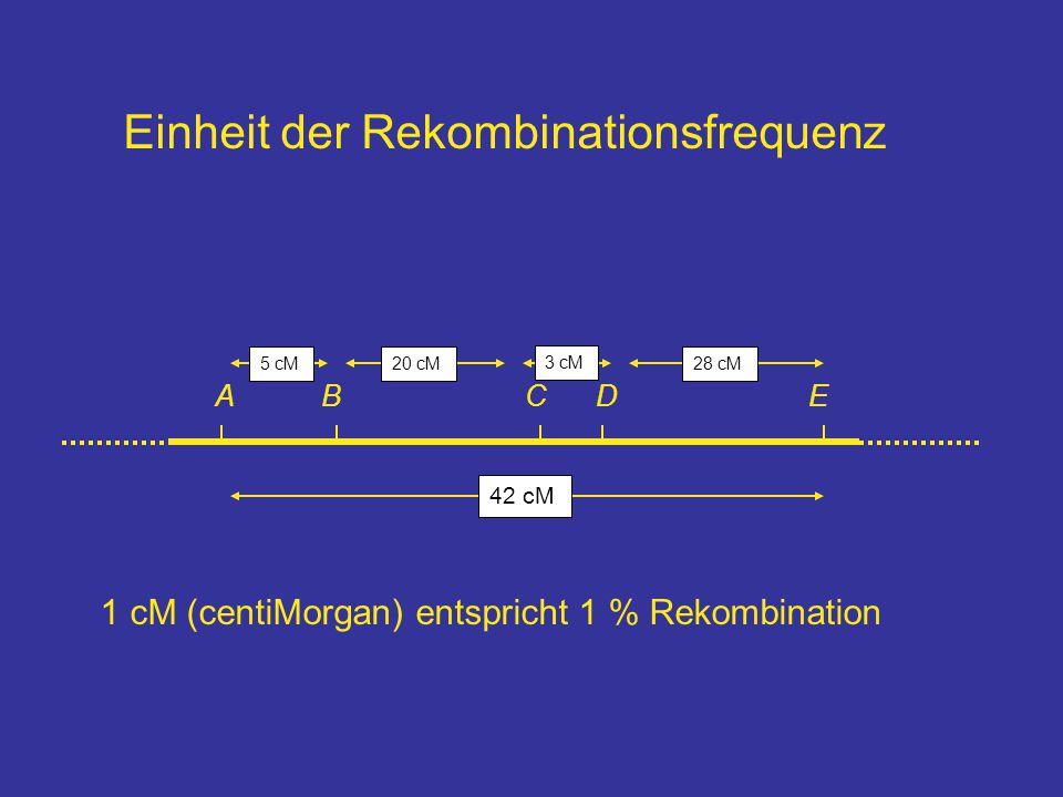 Einheit der Rekombinationsfrequenz