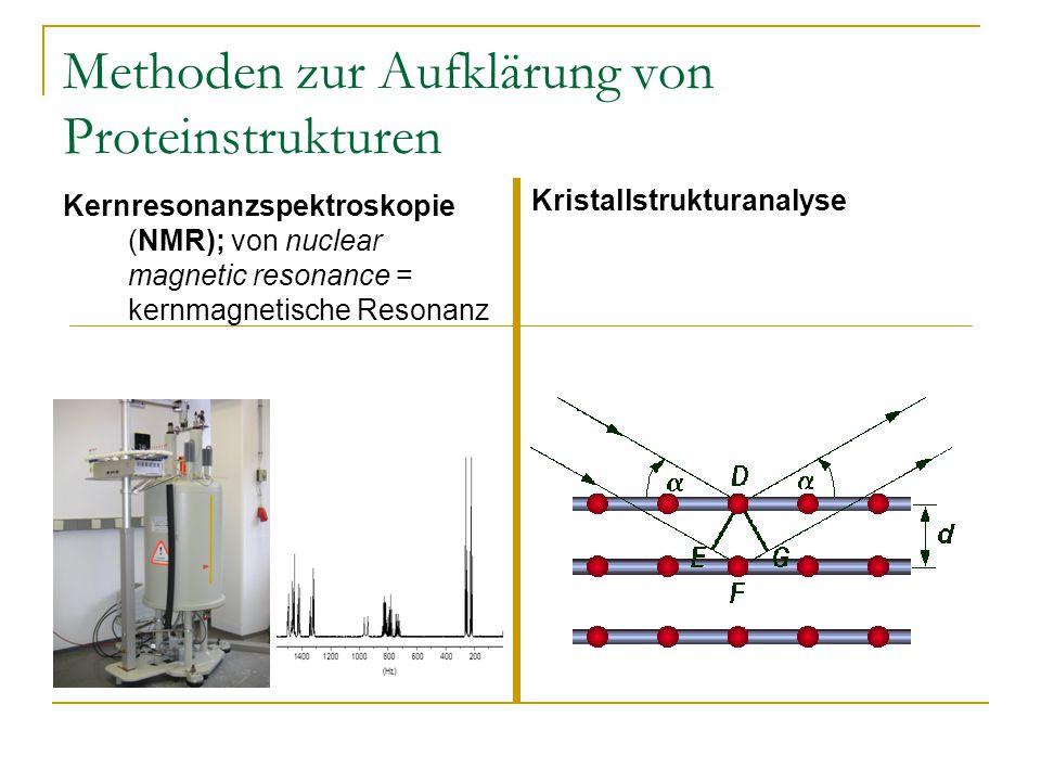 Methoden zur Aufklärung von Proteinstrukturen