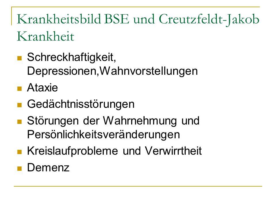 Krankheitsbild BSE und Creutzfeldt-Jakob Krankheit