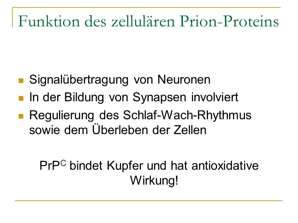 Funktion des zellulären Prion-Proteins