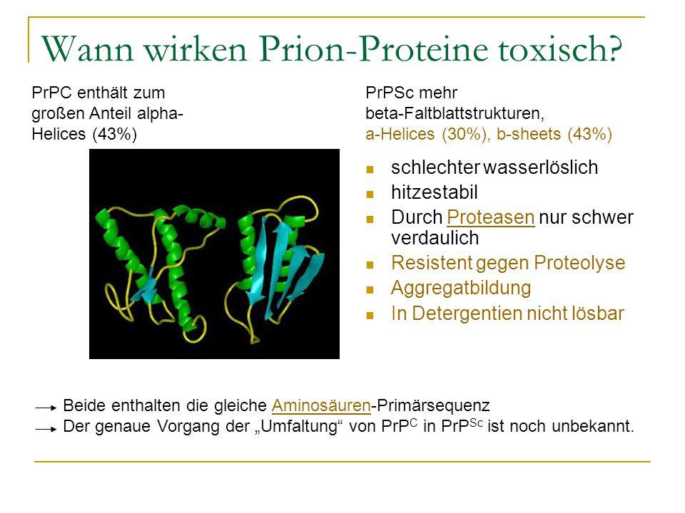 Wann wirken Prion-Proteine toxisch