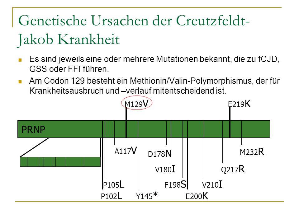 Genetische Ursachen der Creutzfeldt-Jakob Krankheit