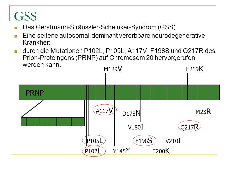 GSS PRNP Das Gerstmann-Sträussler-Scheinker-Syndrom (GSS)
