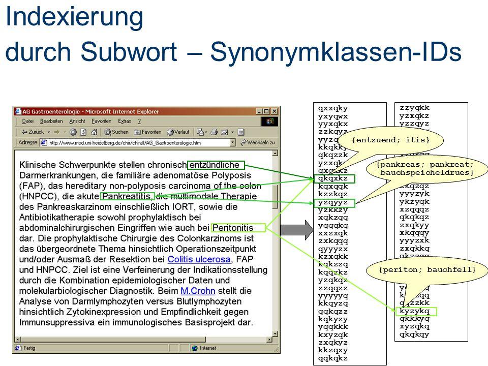 Indexierung durch Subwort – Synonymklassen-IDs